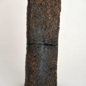 ouvrage-jerome-hirson-monolite 1