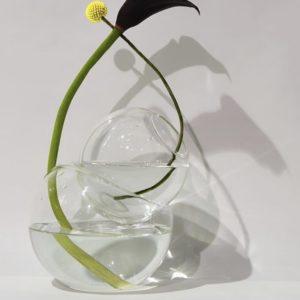 ouvrage-laurence-brabant-vase-boule-inséparables